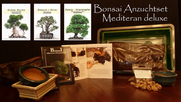shop bonsai anzuchtset mediteran deluxe pfel punica granatum nana inndoor 30 samen von der. Black Bedroom Furniture Sets. Home Design Ideas